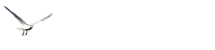 Pacific Breeze side logo